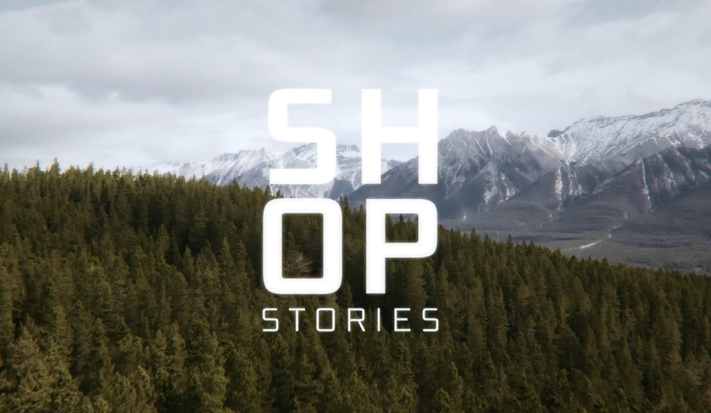 Blizzard Skis — Shop Stories